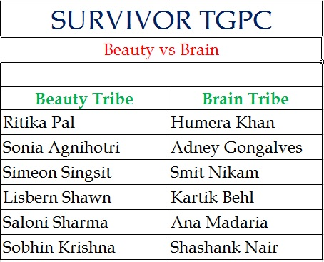 Beauty vs Brain Tribe