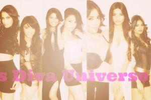 Miss Diva Universe 2014 Contestants