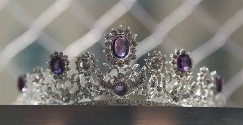 Miss World Brazil 2015  Crown