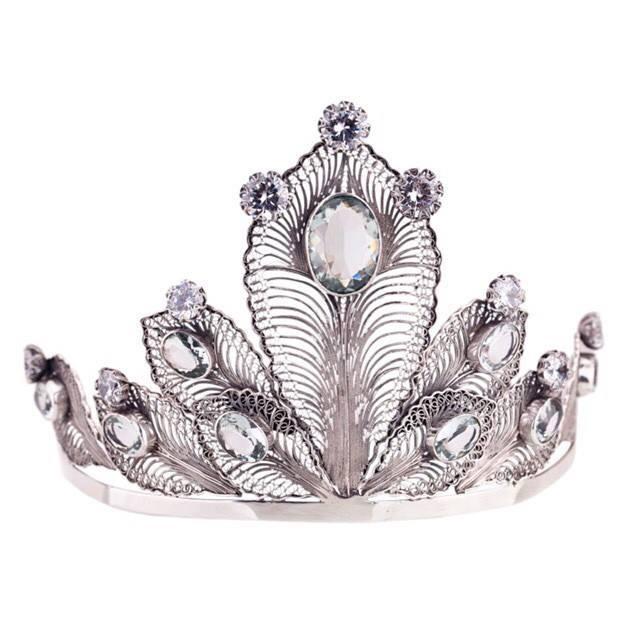Miss Denmark universe Crown