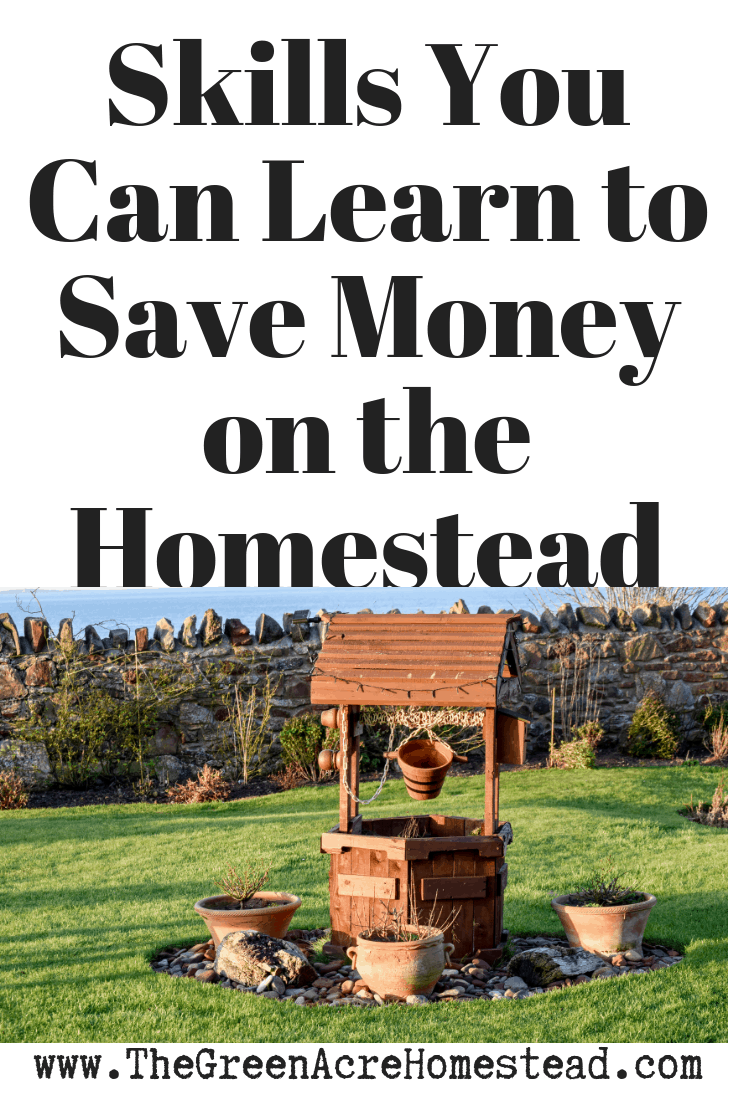 Skills You Can Learn to Save Money on the Homestead (2)