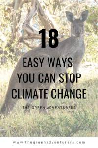 18 Easy Ways You Can Stop Climate Change PINTEREST