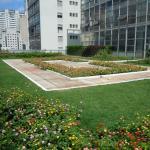 Avenida Paulista ganha seu primeiro telhado verde