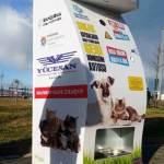 Máquina troca recicláveis por ração para animais de rua