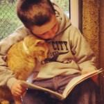 Abrigo convida crianças em alfabetização a ler para animais abandonados