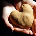 A iniciativa que recolhe frutas e vegetais feios para doar a pessoas necessitadas