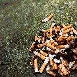 Brasil quer multar quem joga bitucas de cigarro na rua