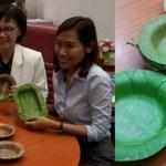 Pesquisadores tailandeses desenvolvem pratos descartáveis feitos de folhas