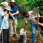 Quer aprender mais sobre hortas? Oficina ensina técnicas sustentáveis de plantio no feriado de 7 de setembro