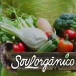 Brasileiras criam delivery de produtos orgânicos com assinatura mensal