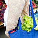 Consumo de agrotóxicos reduz fertilidade em mulheres, aponta estudo de Harvard