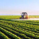 Brasil permite concentração 5 mil vezes maior de agrotóxico em água usada na agricultura do que países da Europa