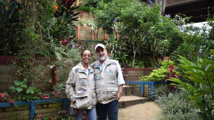 Cidade colombiana cria corredores verdes para combater calor