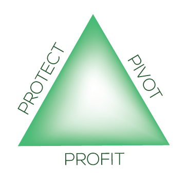 Protect, Pivot, Profit
