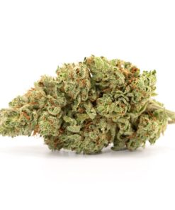 purchase blueberry-kush online in Gainesville, where to buy blueberry-kush online in Hollywood, order blueberry-kush online in Coral Springs
