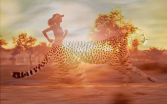 HIIT Training. Act Like a Cheetah