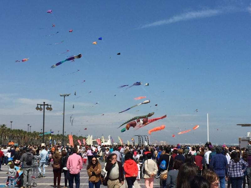 Valencia more kites