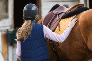 Take safety equipment to your equine job interview - Caroline Carter Recruitment Ltd