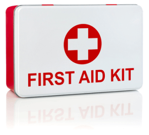 Equine First Aid kit contents