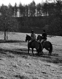 Keep warm working with horses - Keep Warm Riding