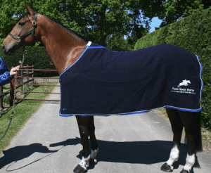 Christmas Stocking Fillers for Horse Lovers - Personalised Show Rug
