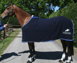 Christmas gift ideas for horse lovers - Personalised Show Rug