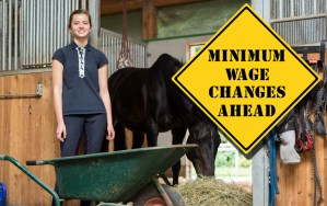 The National Minimum Wage and Living Wage from April 2018