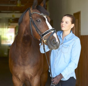 Become a professional groom in 6 Simple Steps - Be honest about your skills and experience