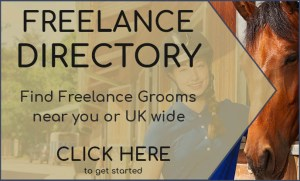 Freelance Grooms Directory