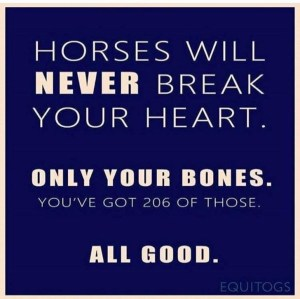 Maintaining health and fitness when working with horses - staying out of A and E