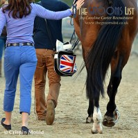 The Ultimate Guide to Badminton Horse Trials - Competition Grooming
