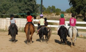 Become a horse riding instructor - ponies