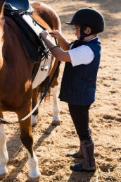 Have you got what it takes to become a horse riding instructor - supervise children