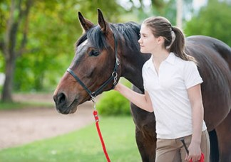 Apprentice Grooms Directory - The Grooms List by Caroline Carter Recruitment