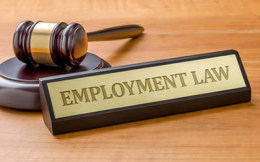 Equine Apprenticeship Myths - BUSTED! Employment Law