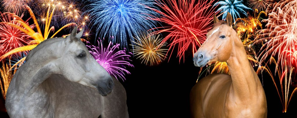 Top tips for grooms caring for horses through the firework period