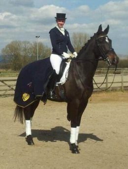 Keeping Your Equine Athletes Warm - Hannah Doggett - Exercise rugs