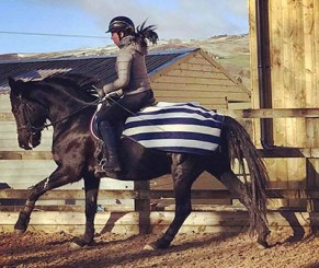 Keeping Your Equine Athletes Warm - Hannah Doggett - Working in an exercise sheet