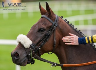 News - Equine flu outbreak sees race meets cancelled - the consequences