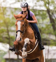 The Ultimate Equestrian Apprentice Startup Kit - Riding
