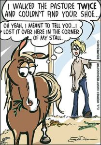 How to maintain a good relationship with the yard Farrier - Need help