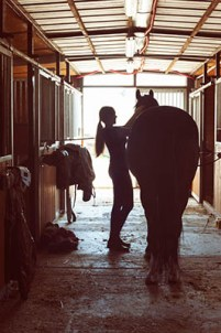 Just A Groom by Lucy Blain - Equine Career