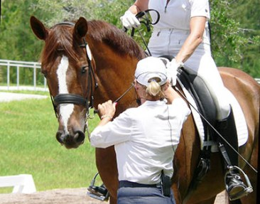 Just A Groom by Lucy Blain - Supporting Professional Riders