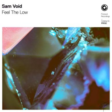 Sam Void Feel The Low Protocol
