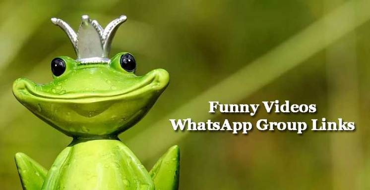 WhatsApp Funny Videos Group Invite Links