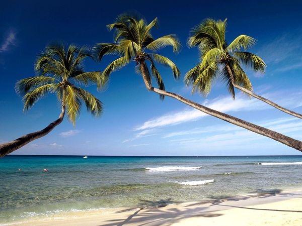 Barbados Trip Report 2018 – Episode 1