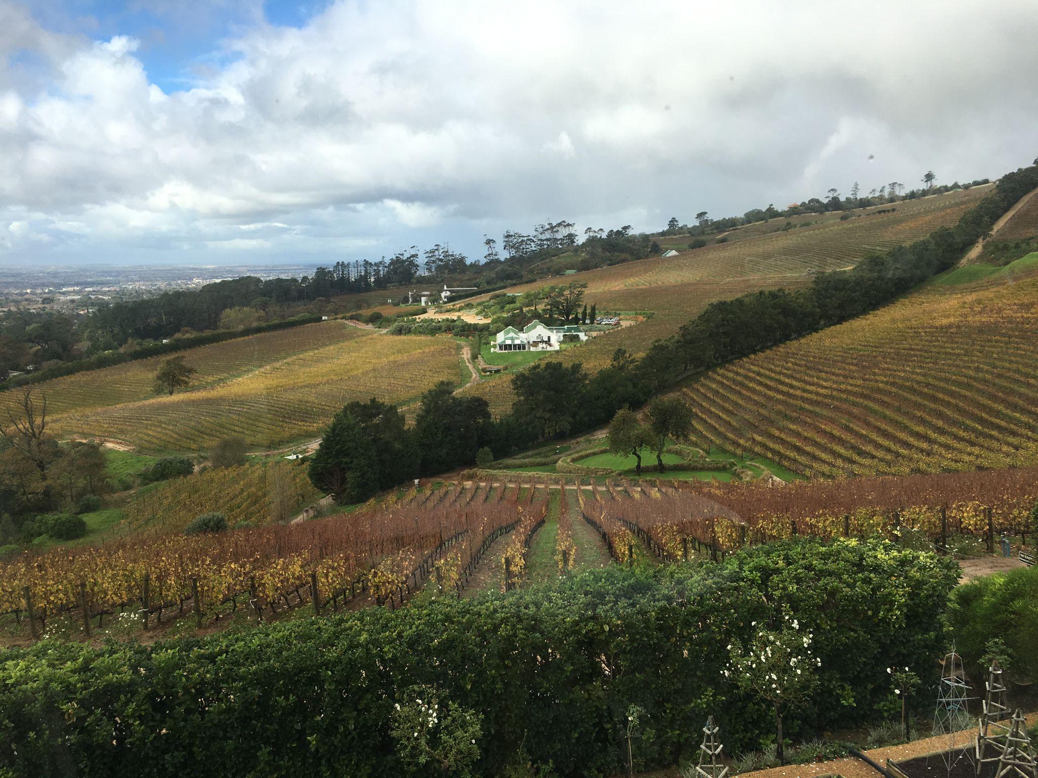 View-Beau-Constantia-Cape-Winelands
