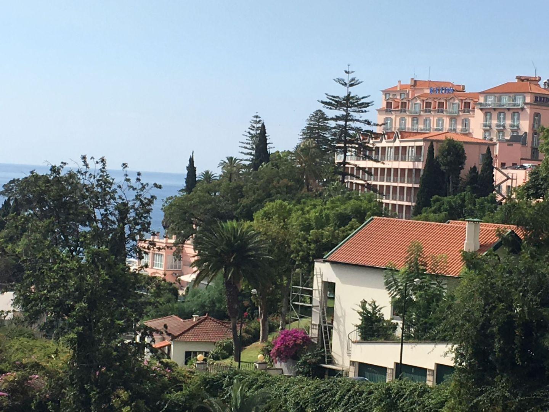 Madeira Trip Report – Part 2