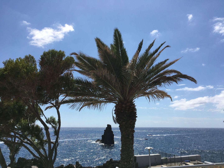Madeira Trip Report – Part 1