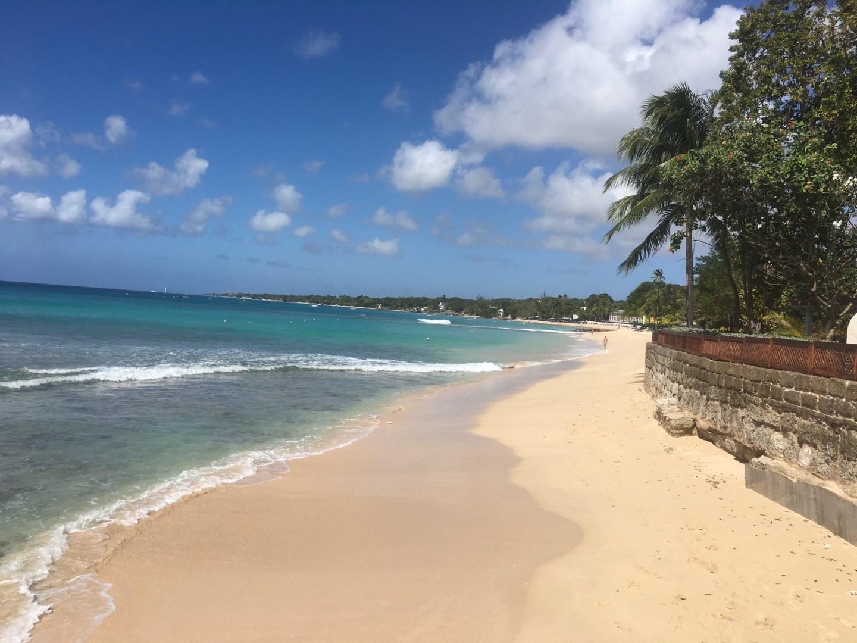 Barbados Trip Report 2019
